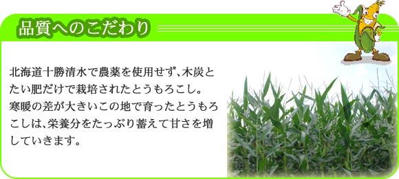 北海道十勝清水で、農薬を使用せず木炭とたい肥だけで栽培されたとうもろこし。寒暖の差が大きいこの地で育ったとうもろこしは、栄養分をたっぷり蓄えて甘さを増していきます。